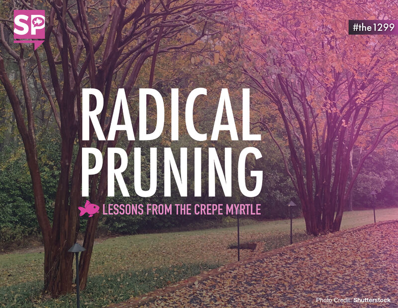 Radical Pruning: Lessons from the Crepe Myrtle